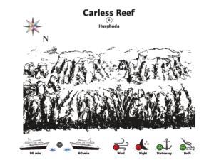 Fantastische Sicht am Carless Reef