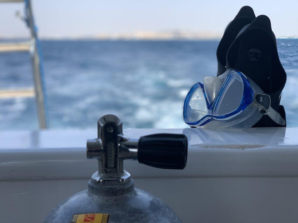 Neues vom Roten Meer: Unsere Woche