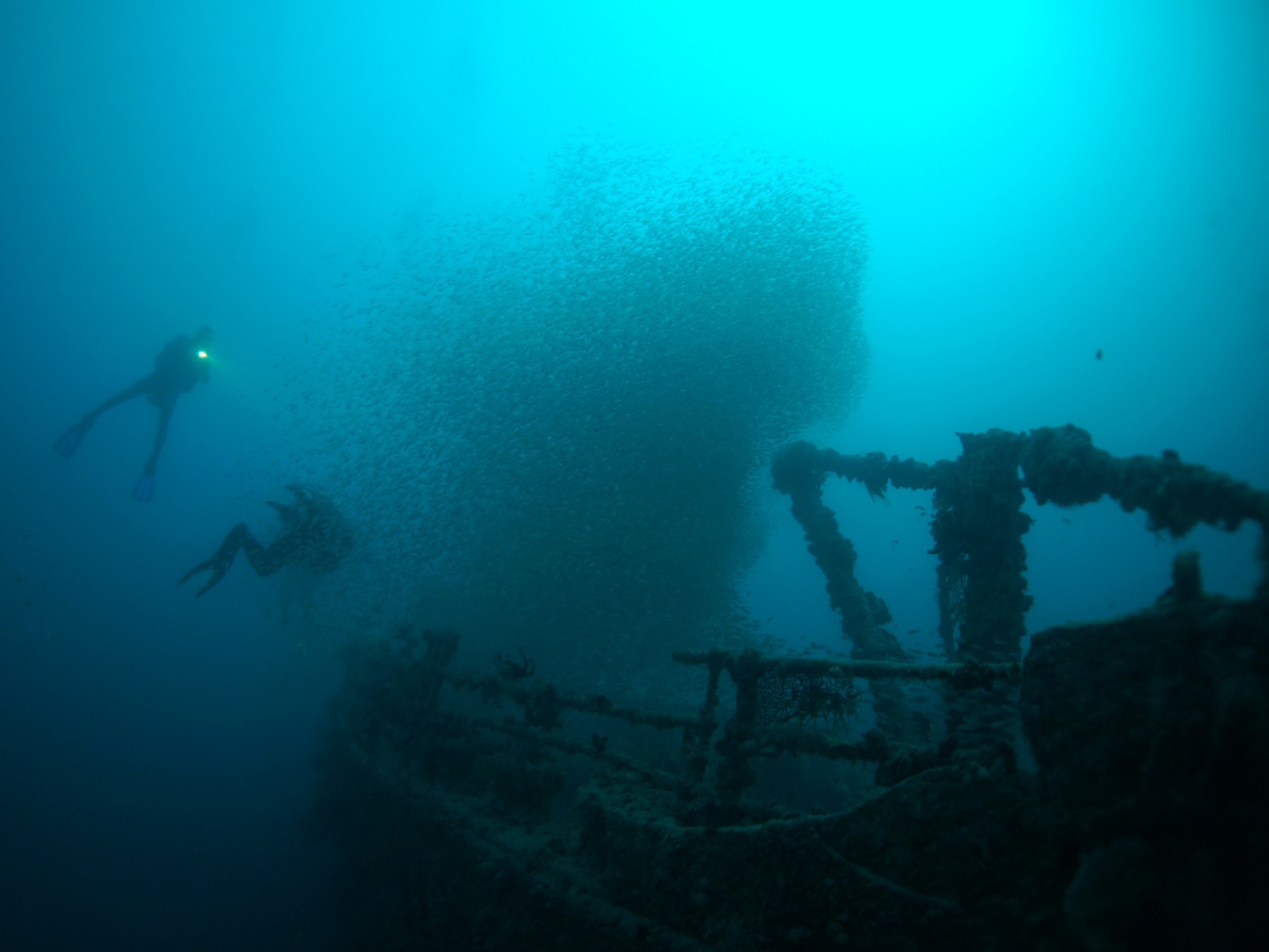 Wracktauchen-Hurghada