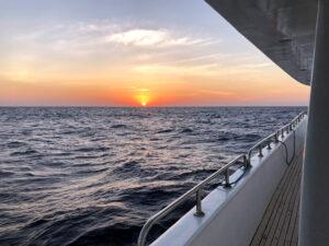 Was gibt es Neues vom Roten Meer?