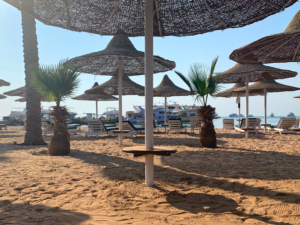 Im Überblick: Die Woche aus Ägypten